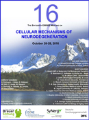 Eibsee Meeting 2016: October 26-28, 2016